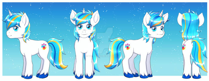 Male Pony Reference |CM|