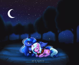 Night Ponies|YCH| finished