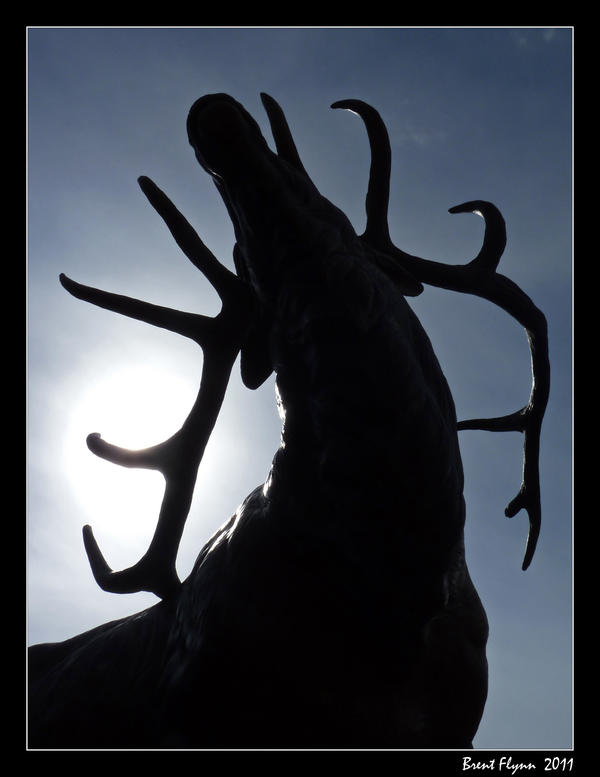 Elk Silhouette by DarthIndy