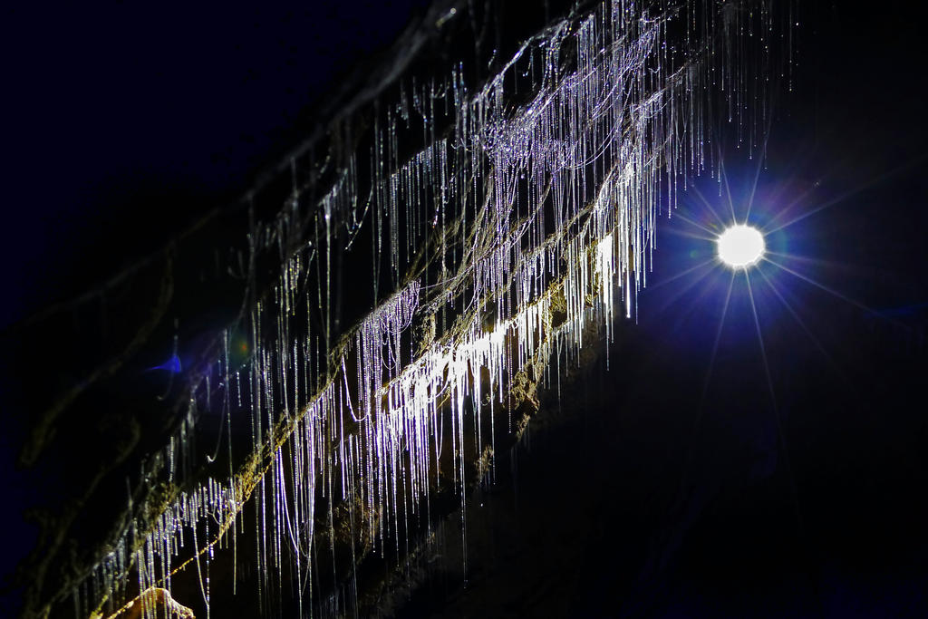 Glow Worm Threads by DarthIndy