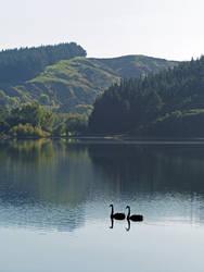 Lake Tutira Reflections by DarthIndy