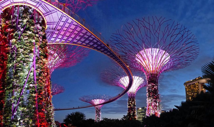 Gardens by the Bay 01 by DarthIndy