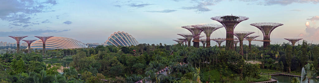 Gardens by the Bay Panorama by DarthIndy