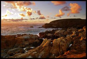 Point Lobos by LeGreg