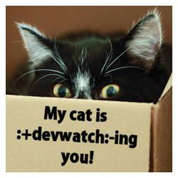 :+devwatch:-ing you by Vissepopje