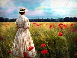 Poppy field by Madink-art