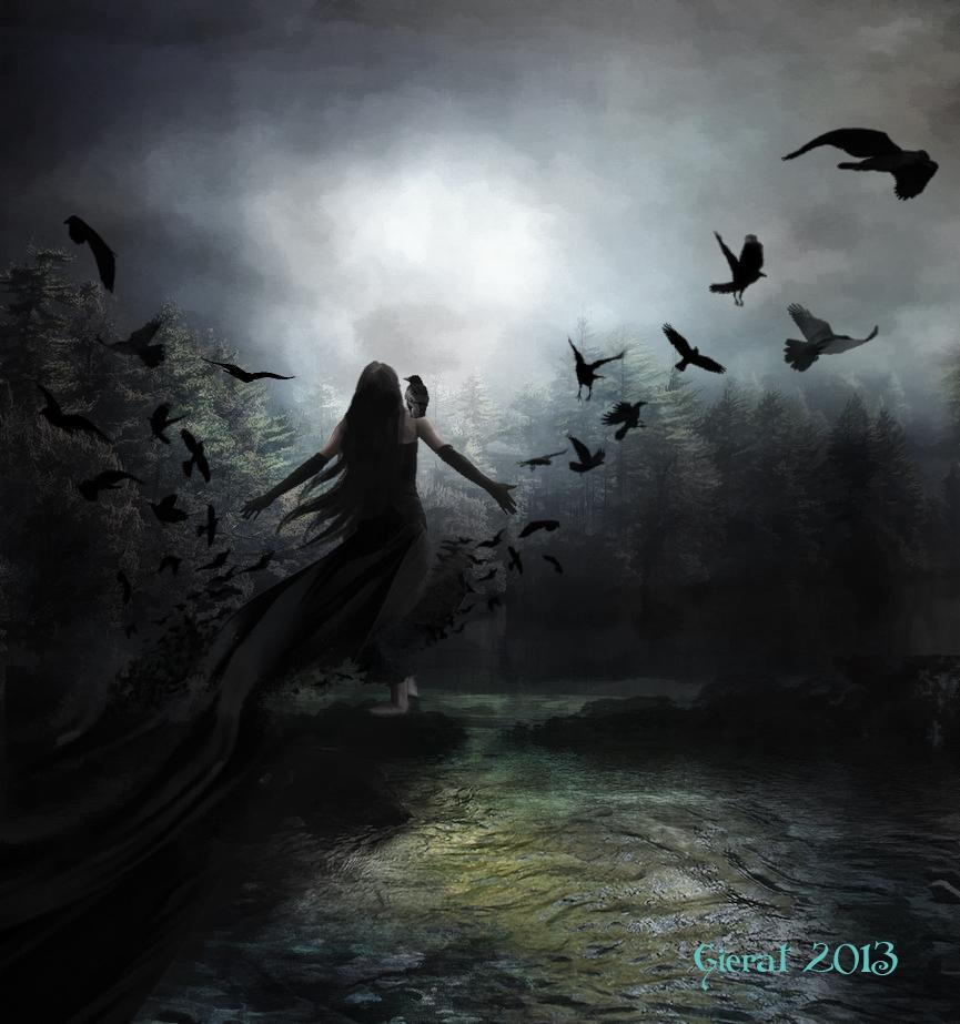 Výsledek obrázku pro raven at night