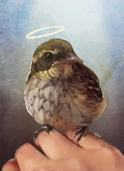 :: May you fly where you be little Puff ::