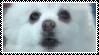 Gabe The Dog .:f2u if fav:. by K-9-Dog