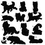 11 Dog sketchy bases! [50 points]