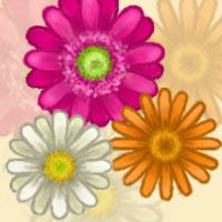 Daisies by nynja101