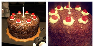 The Cake! ...(Is not a Lie~)