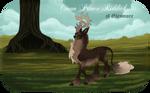 Riddick | Stag| Glenmore Crown Prince