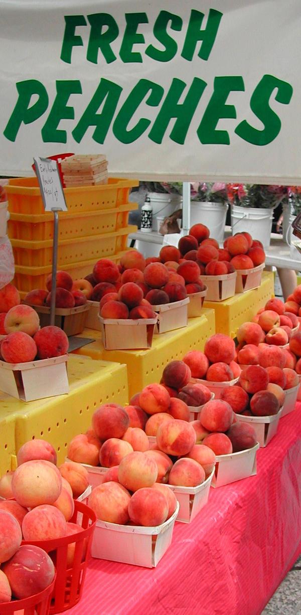 Peaches Chicago Tour