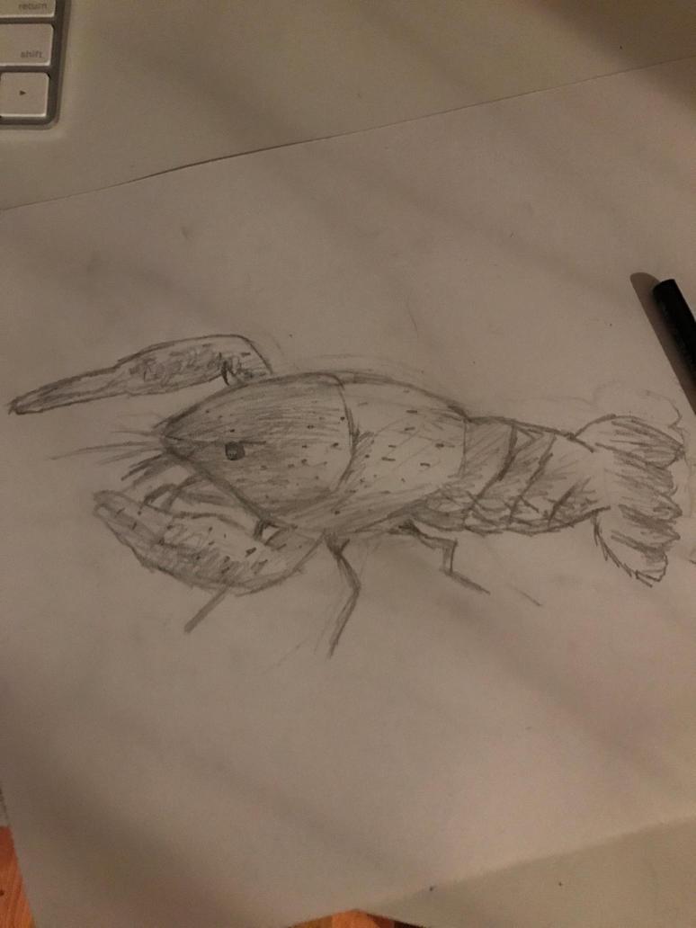 Short crayfish sketch by Thebubblebot
