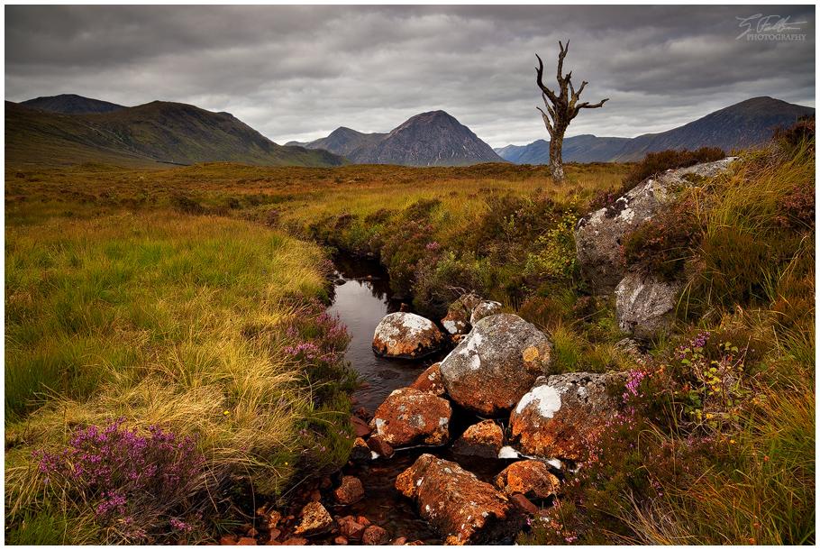 Rannoch Moor by Swordtemper