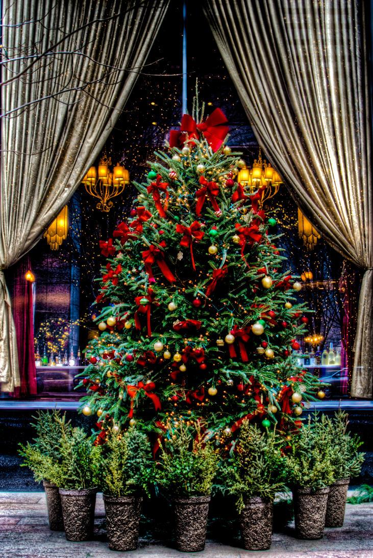 Christmas tree photo by spudart