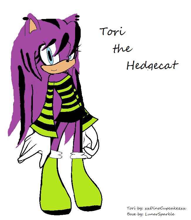 Tori the Hedgecat (New Outfit) by xxDinoCupcakezxx