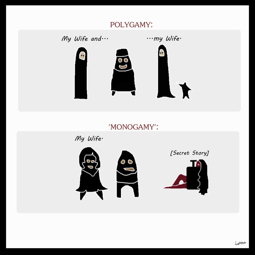 polygamy versus monogamy essay One of the insights in your book is that polygamy and monogamy exist on a  continuum you quote e o wilson as saying humans are.