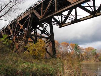 Bridge Over Trees by AllStock