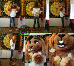 Bunny Fursuit Male Partial Commission by PickleMittens