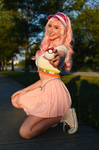 Pokemon Trainer - Fairy Type