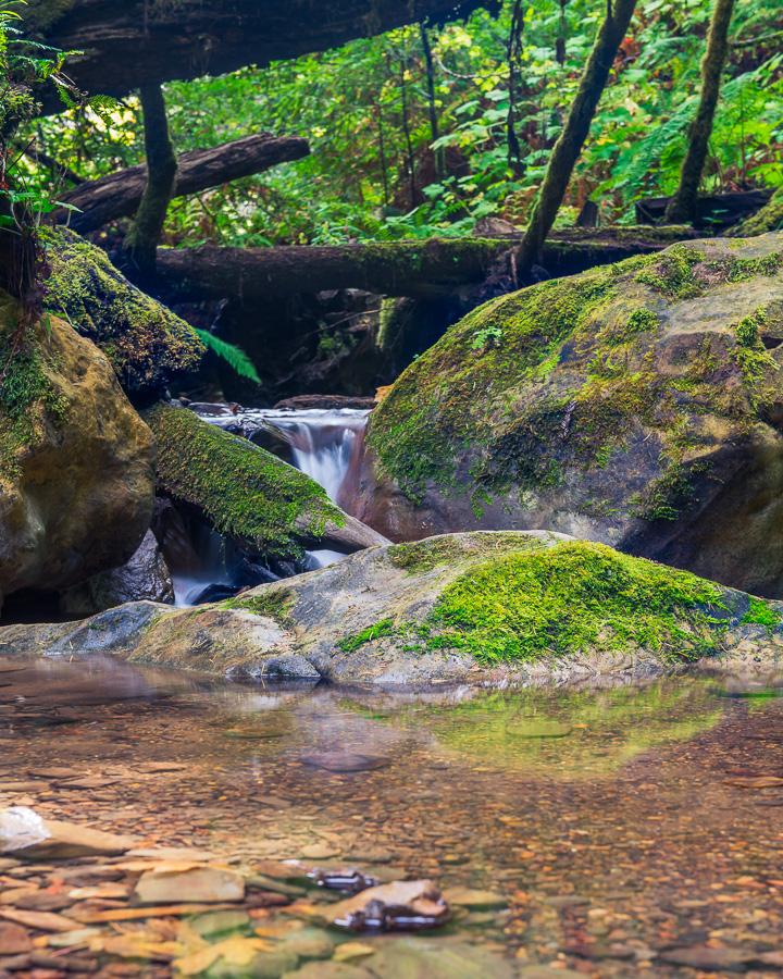 Purisima Creek Waterfall by FeralWhippet