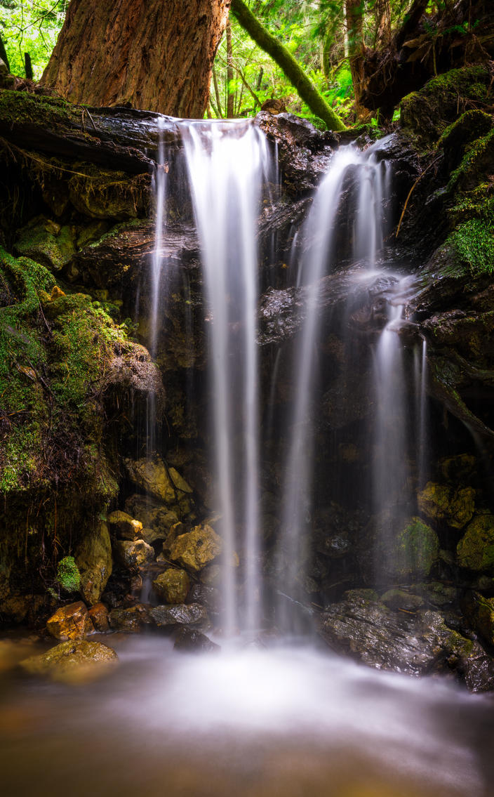 Redwoods Waterfall by FeralWhippet
