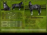CT Enchantress - Sold