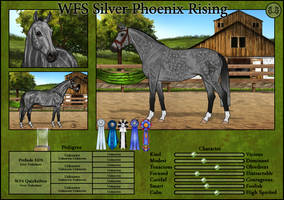 WFS Silver Phoenix Rising