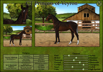 CT Princess of Veyron by Cookie1992