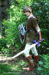 Link: Hero of Hyrule by LinkInSpirit