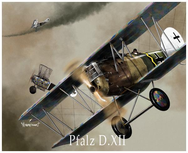 Pfalz DXII by dugazm