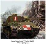 panzer V