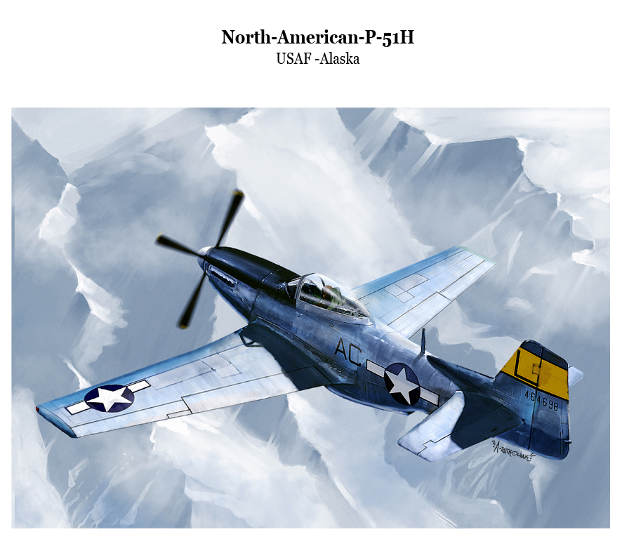 p51h USAF by dugazm