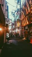 Osaka Alley street food part 2