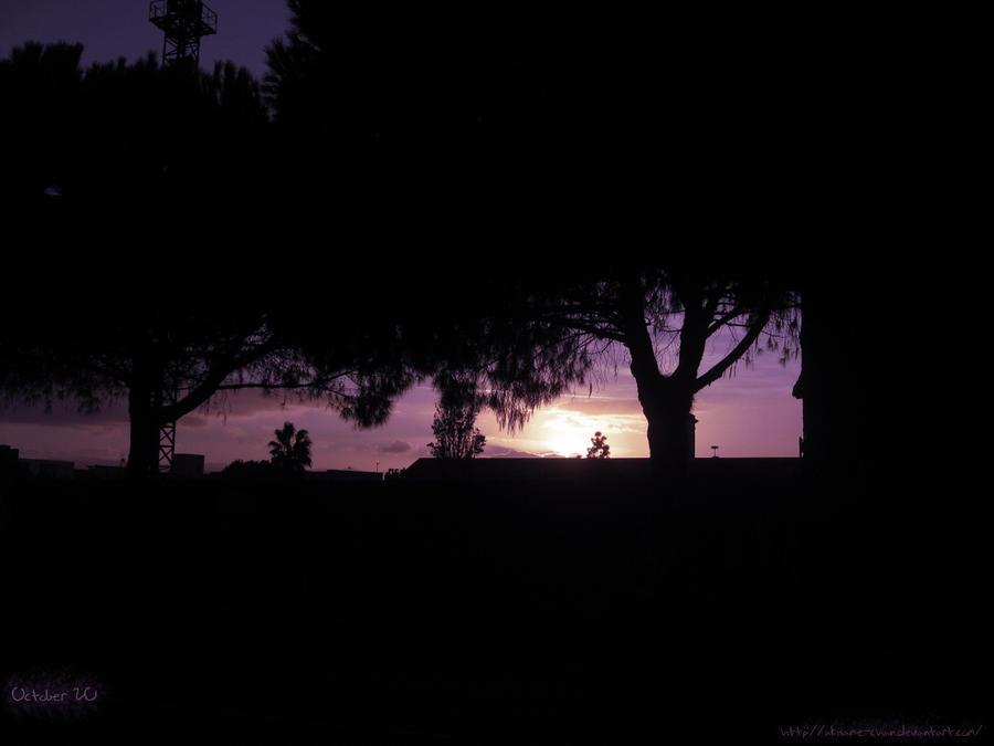 Purple dawn by Akisame-kun