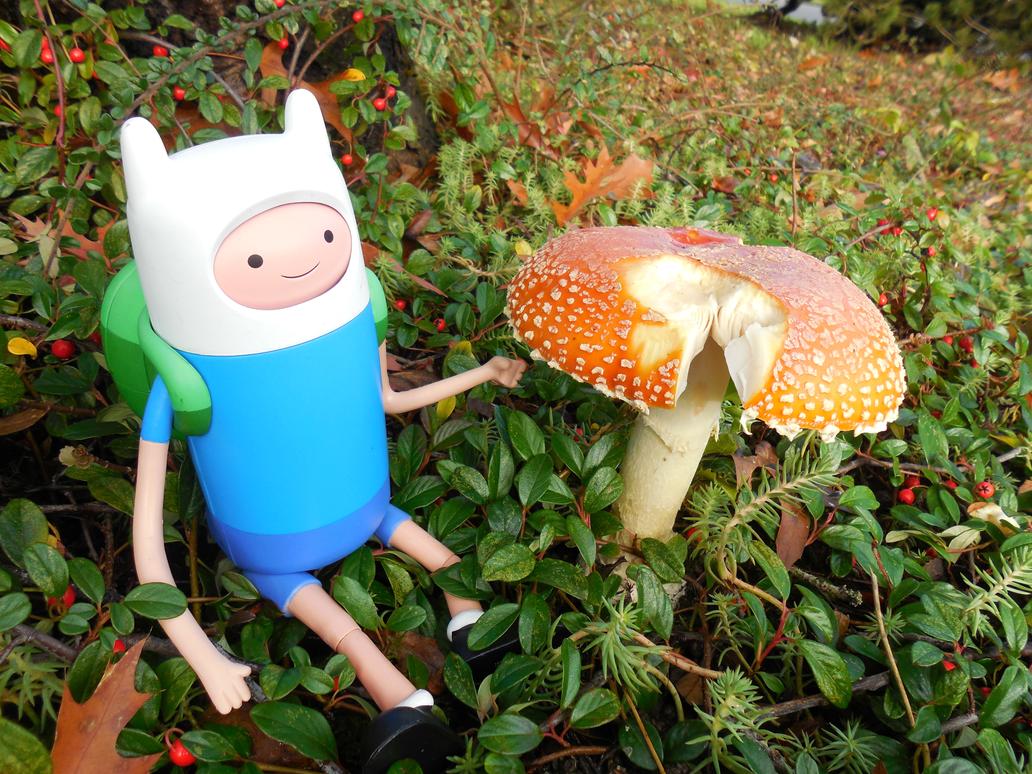 Adventure in Wonderland by GengarGirlCat