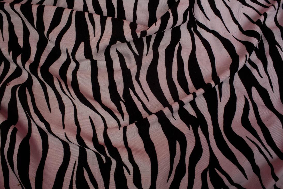 zebra texture by VioletBreezeStock