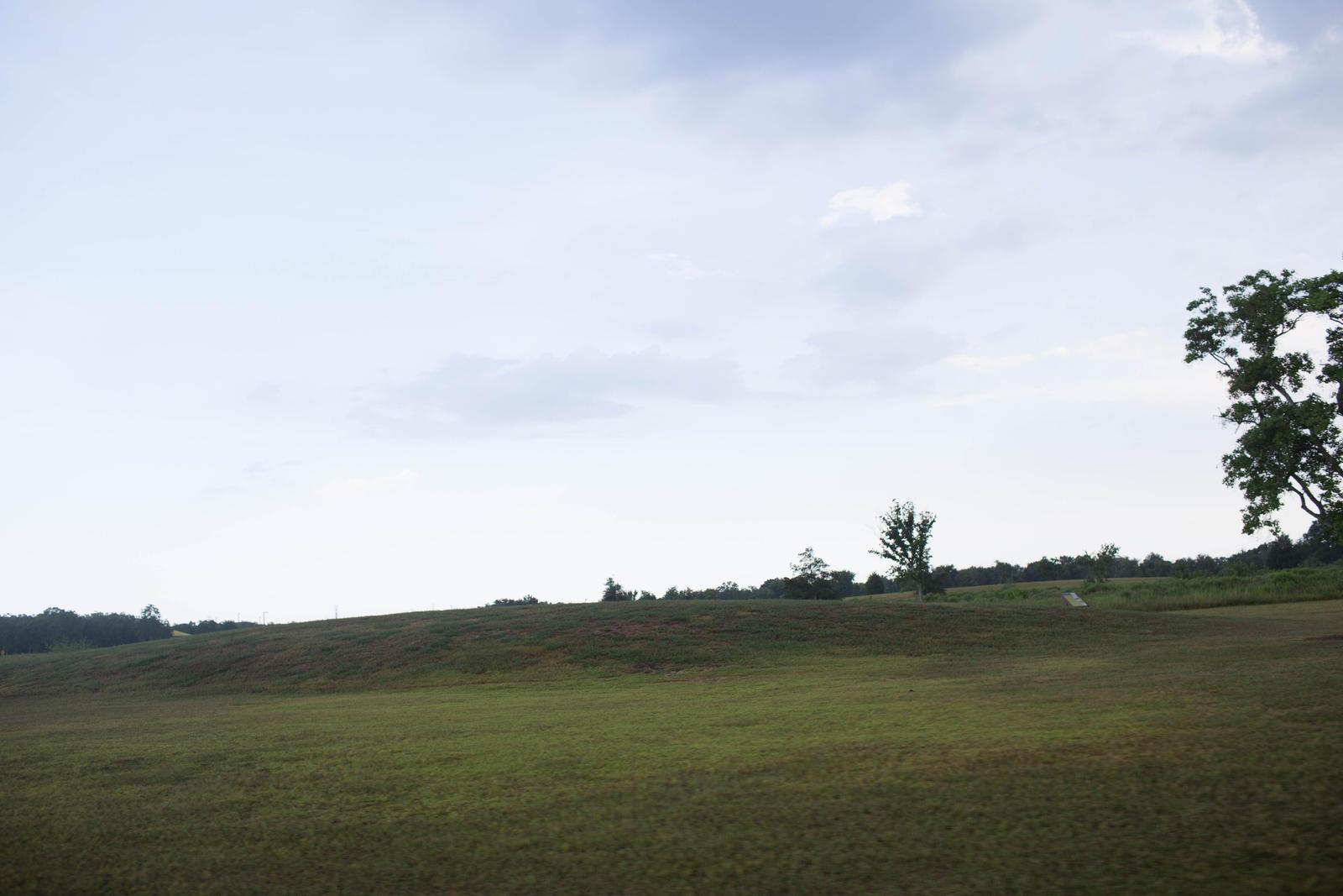 field by VioletBreezeStock
