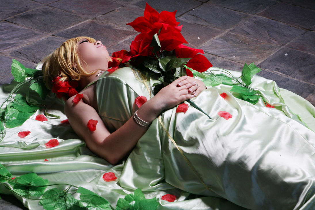 Princess in Deep Sleep by miharu-desuu