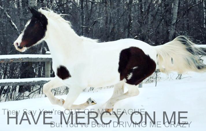 ..::MERCY::.. by EverlastingRide