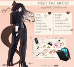 Meet the artist by LunaLase