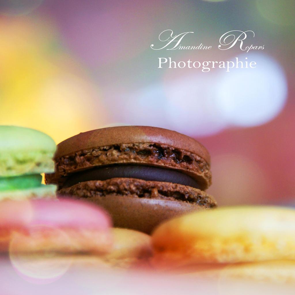 Macaron au chocolat by AmandineRopars