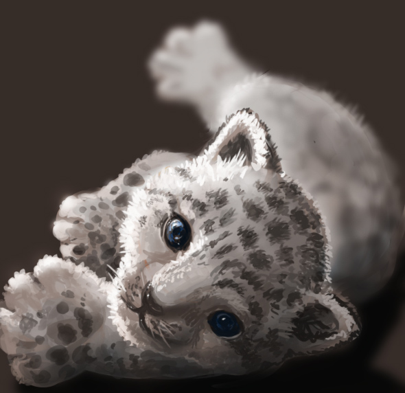 Baby Snow Leopard By Athena Erocith