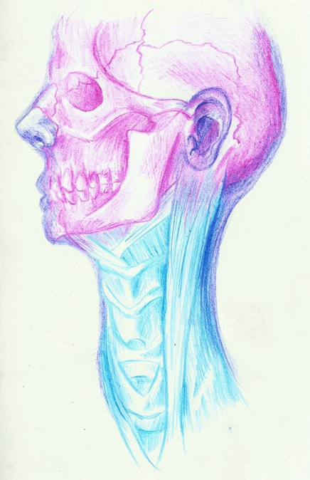 Head and Neck by Zeliga