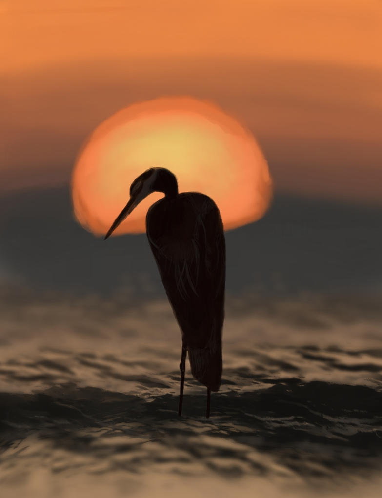 Heron of the Setting Sun by aseeon