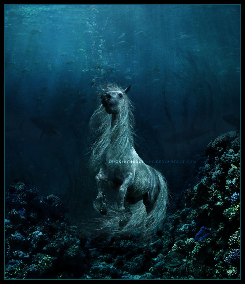 Inachus and Tuefel The_Sea_Horse_by_duckiethedonkey
