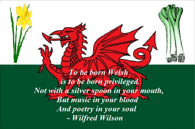 Image result for to be born welsh