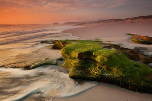 Moss Rock by Dreampixphotography
